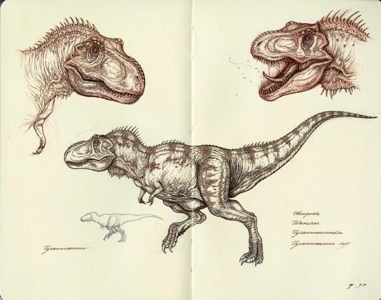 Pinned Image #dinosaur #sketch
