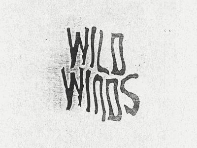 Wild Winds #genitempo #matthew