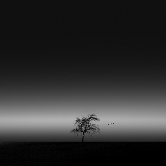 landscapes on the Behance Network #night #photography #minimal #landscape