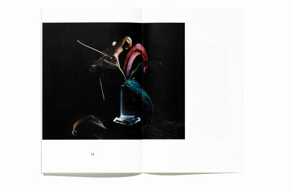 Best Photography Bedow Examples Work Book images on Designspiration
