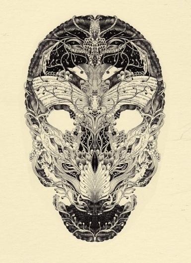 Illustrated Skulls by Meyoko | Colossal #illustration #anatomy #skull