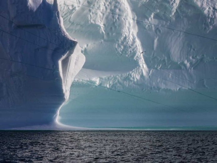 Amidst the Icebergs, Disko Bay, Greenland