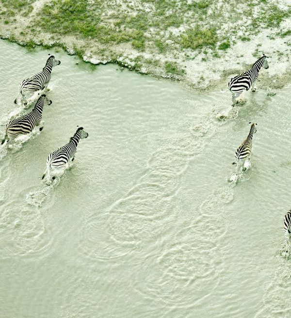 Aerial Photography by Zack Seckler #photography #aerial #landscape