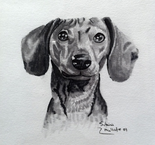 Rotulador anterior 2009 | Silvia Mallofre #teckel #silvia #mallofre #illustration #daschund #dog