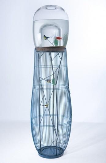 Bird Cage Aquarium #product #design #funiture