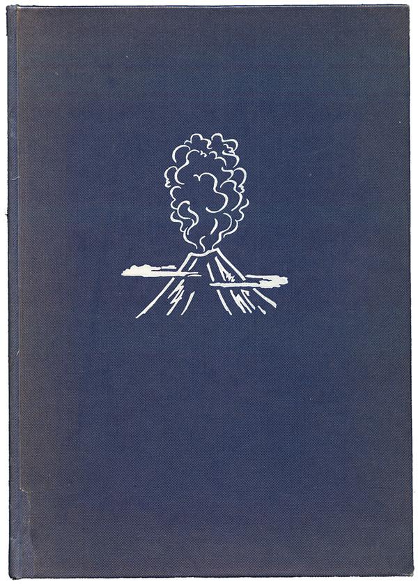 Freaky Fauna 50 Watts #cover #illustration #minimal #book