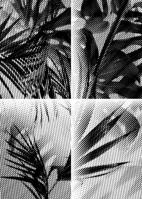 laurajouan http://laurajouan.tumblr.com #graphic #pattern #texture