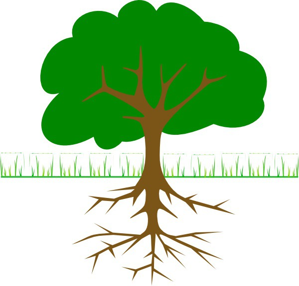 #treelogo - Tree Branches And Roots