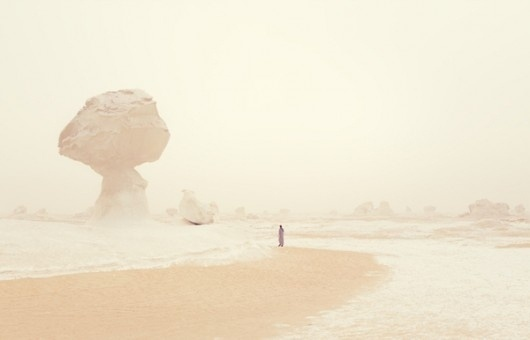 WANKEN - The Blog of Shelby White #balanced #rock #form #desert
