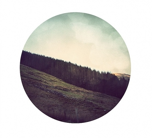 Irish Forest #circle #photography #vintage