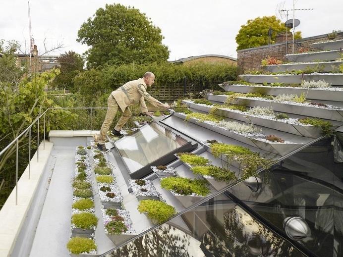 Garden House Under a 'Hanging-Basket' Roof / Hayhurst