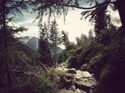 tumblr_kr0ebfAOWB1qz7n7ro1_400.jpg (400×300) #mountain #photography #trees