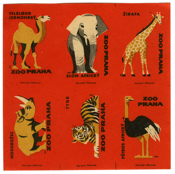photo #matchbox #zoo #matchbook