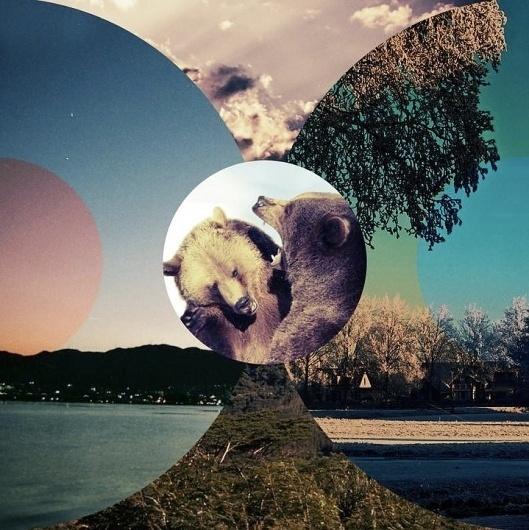 228160_1975839752981_1152707747_2397336_2812711_n.jpg 719×720 pixels #sweden #lac #cercle #bears #forest