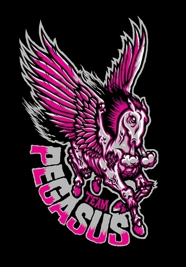 TEAM PEGASUS - Brett Peter Stenson #team #pegasus #brett #illustration #stenson #logo