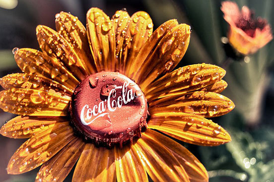 The Mexican Coca Cola Flower #type #image