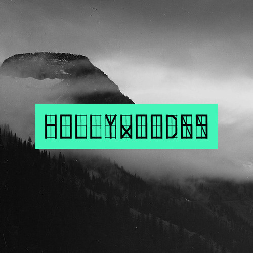Fonts of Chaos is proud to present HOLLYWOOD69 #sublime #simple #b&w&green #typo #typography