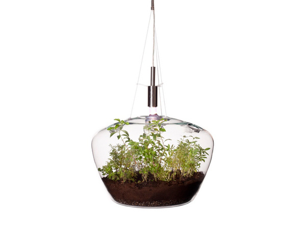 CJWHO ™ (A Suspended Glass Greenhouse Lamp 'glasshouse'...) #creative #lamp #greenhouse #glass #furniture #nature #clever
