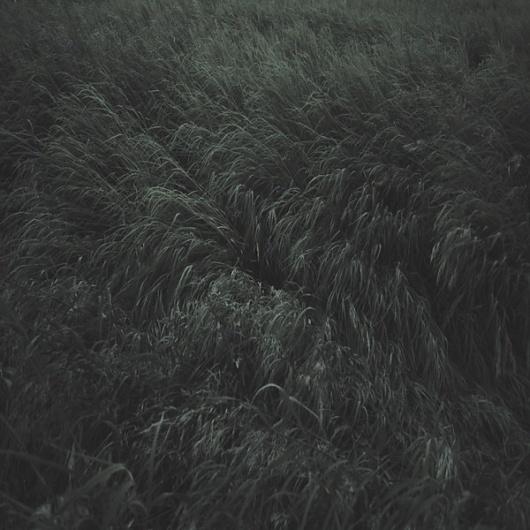 untitled on the Behance Network #photography #garmonique #landscape