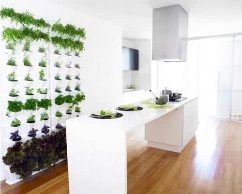 Picture-56-500x400.jpg 500×400 pixels #urban #saving #minigarden #space #vegetable #garden #herbs #vertical