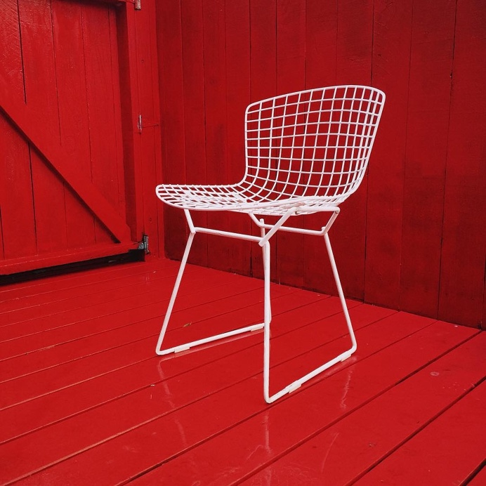 Harry Bertoia side chairs in our backyard.