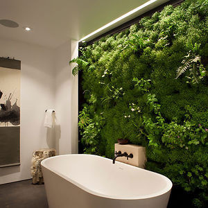 Moss Wall In Bathroom #house #plant #bathroom #wall #green