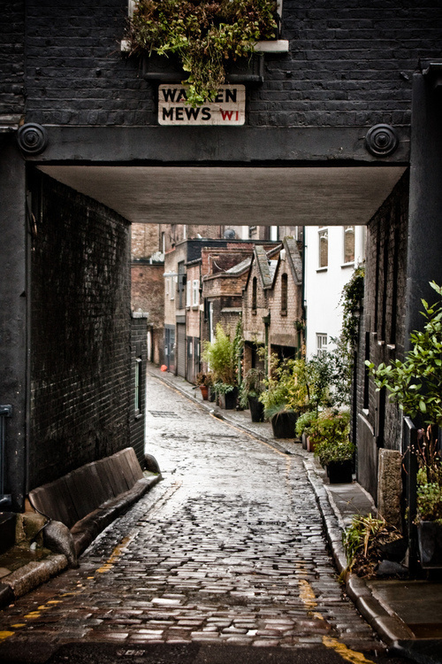 welcome to England then. #hidden #mews #cozy #home #street