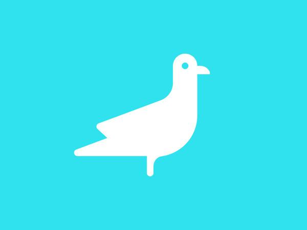 photo #pictogram #icon #design #bird #picto #symbol #gull