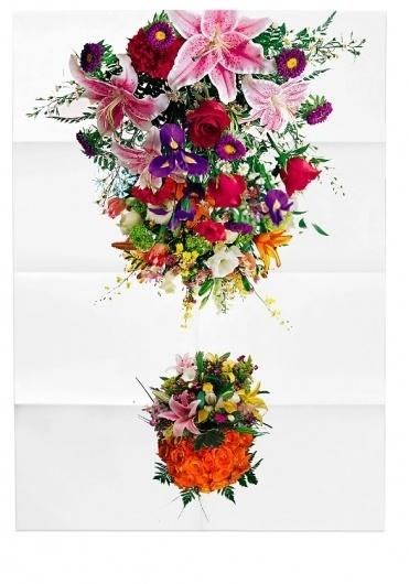 Plakat Design, Typografie, Print Design - Taunus #flowers