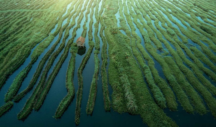 Inle Lake, Myanmar From Above by Dimitar Karanikolov