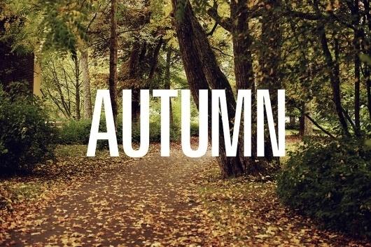 Jakob Nylund / #nylund #photography #autumn #jakob