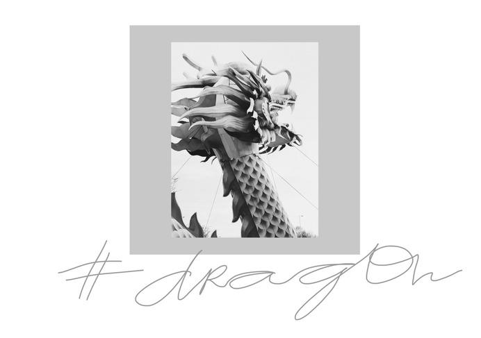 #dragon PHOTOGRAPHIE © [ catrin mackowski ]