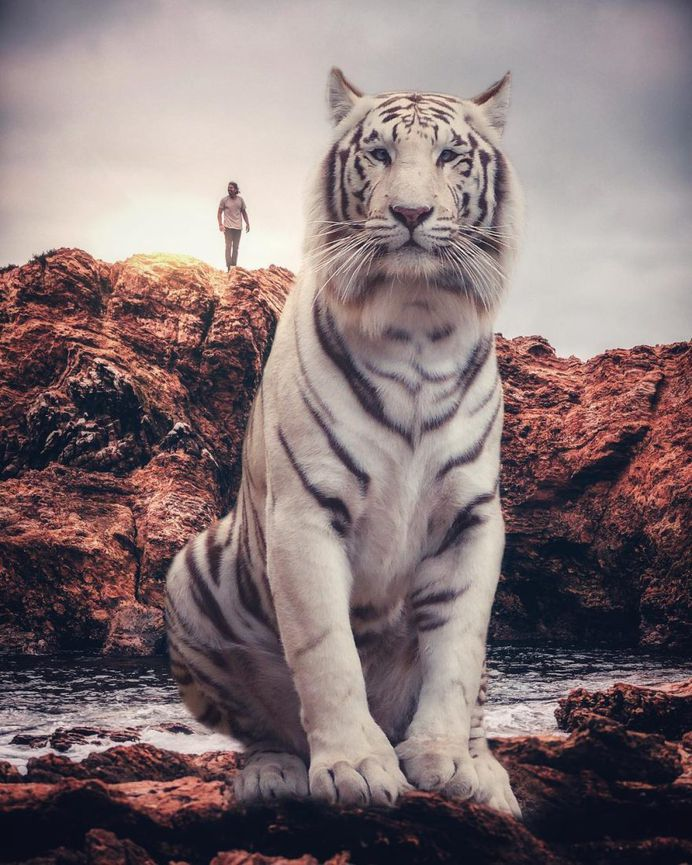 Eben McCrimmon Creates Surreal Fantasy Worlds Using Only His iPhone