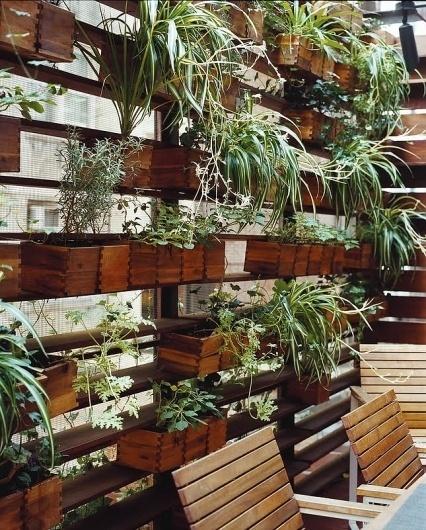 zizmor-house-exterior-plant-wall.jpg (JPEG Image, 645×801 pixels) #courtyards #plants #storage #architecture #landscapes #green