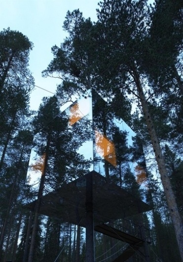 Thy Holy Ghost #tree #glass #nature #architecture #hotel