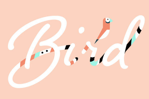 Shelby by Laura Worthington #pink #lettering #bird