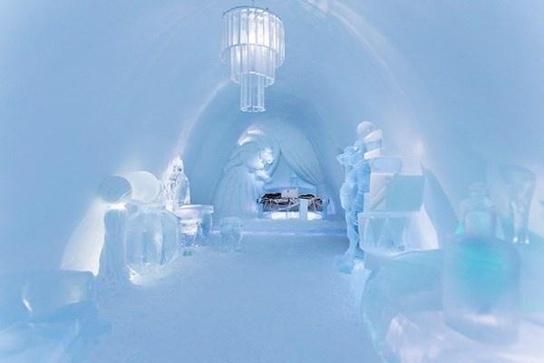 Ice interior in hotel #hotel #ice #art