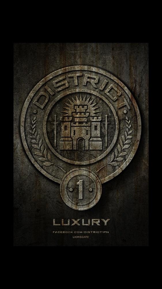 Ignition - The Hunger Games #stones #seal #illustration #huger #games