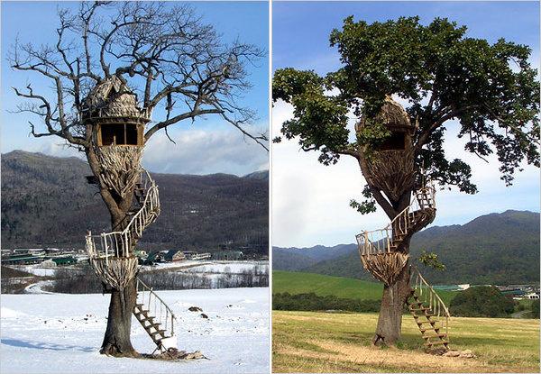 Treehouse by Takashi Kobayashi #house #tree