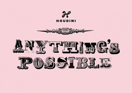 Houdini | Identity Designed #branding #typography