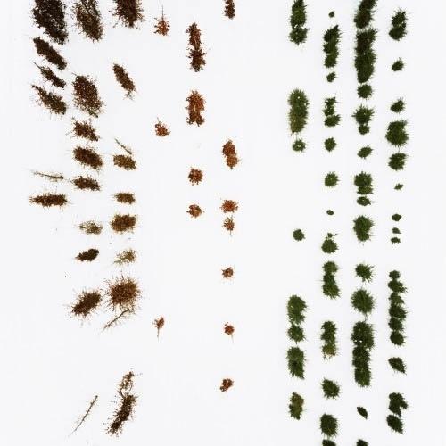 BLDGBLOG: On the Grid #trees #photo #aerial