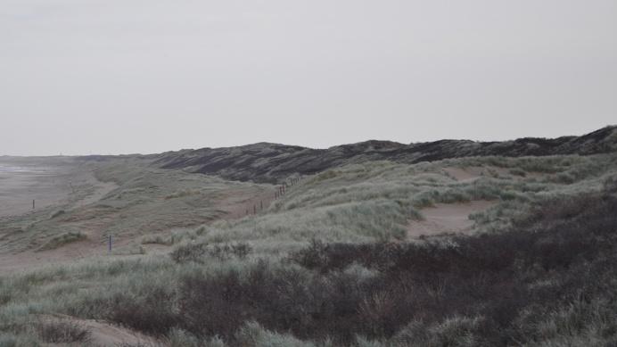 PHOTOGRAPHIE (C) Strand [ catrin mackowski ]