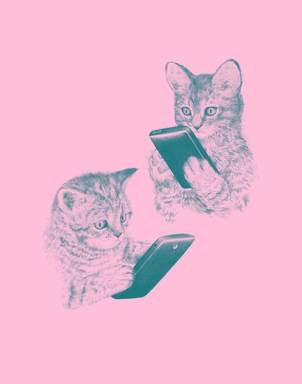 kittens texting #phone #pink #cat #smart #kittens
