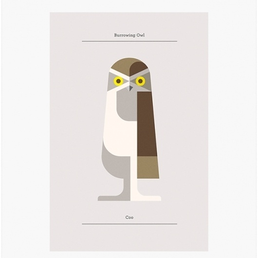 Fancy - Burrowing Owl Print #illustration #owl #poster
