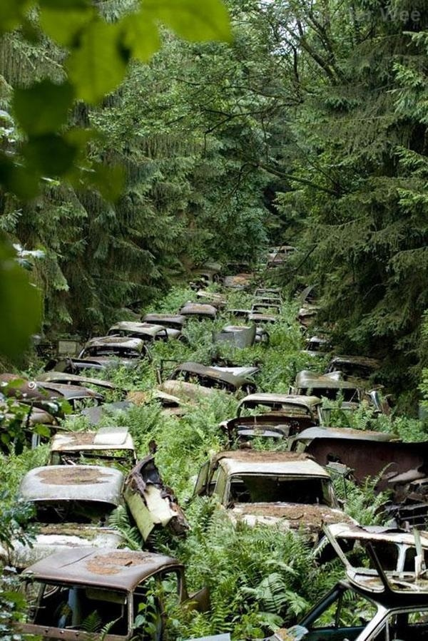 33 more breathtaking and incredible photos of abandoned places Blog of Francesco Mugnai #woods #photography #nature #forest #car