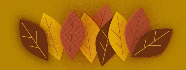 Feuilles #illustration