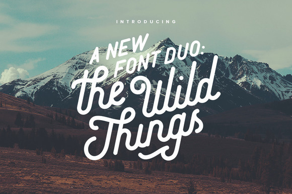 The Wild Things Typeface Calligraphy Cursive Font Handmade Hipster Lettering