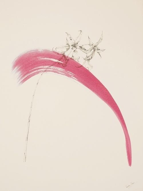 Lines of Beauty by Venetia Norris #venetia #illustration #norris #art #drawing