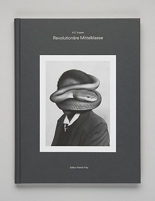 Revolutionäre Mittelklasse #book #snake