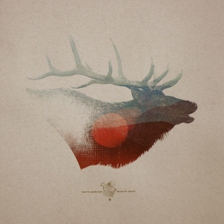 North America Wildlife » ISO50 Blog – The Blog of Scott Hansen (Tycho / ISO50) #mark #print #weaver #poster